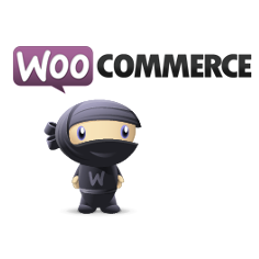 Transformer son site WordPress en boutique en ligne