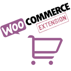 Formation site e-commerce WordPress